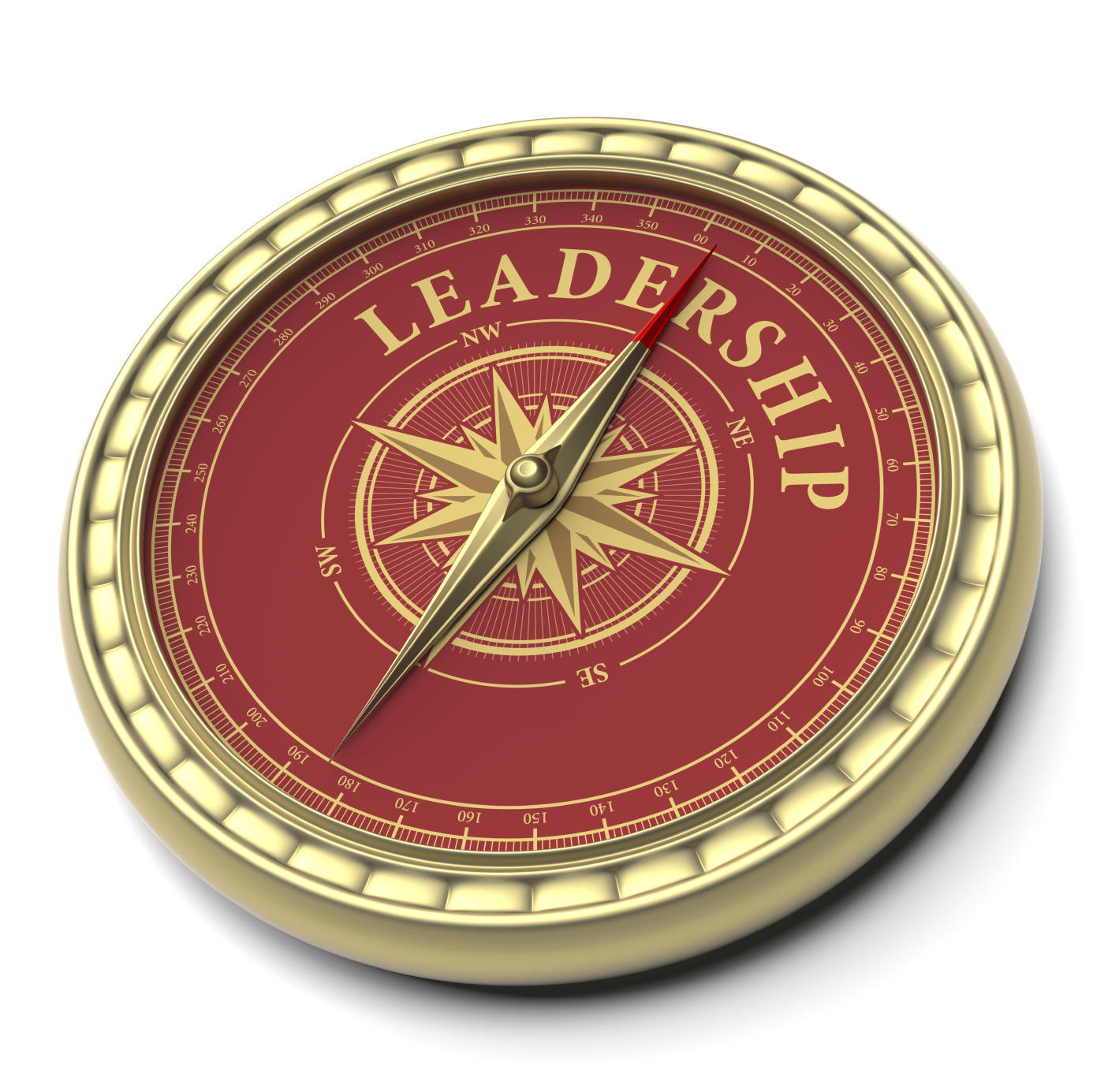 leadership_compass
